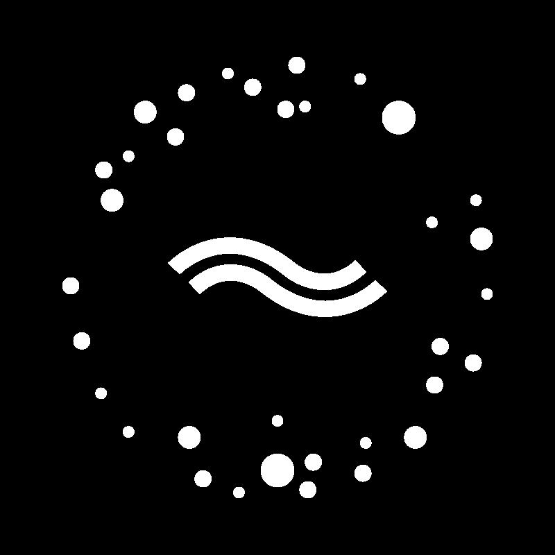 lidonation white transparent logo